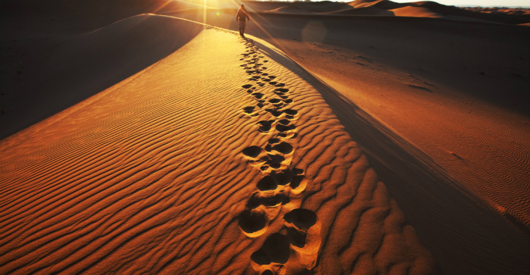 in-the-footsteps-of-the-prophet